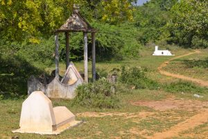 Auf dem Weg nach Auroville