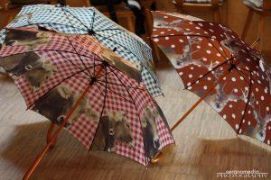 Geweihda Regenschirme