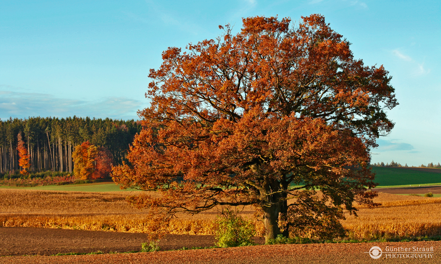 Herbst in Bayern 2013