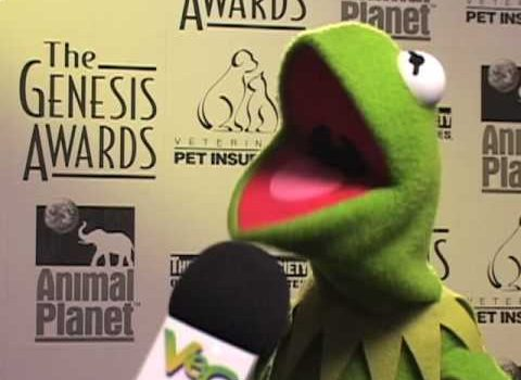 Interview mit Kermit (VegTV)