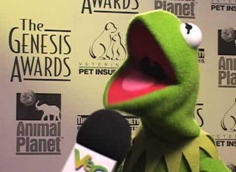 Interview mit Kermit (VegTV)